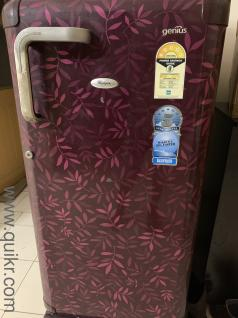 dog for sale in olx | Used Refrigerators in Faridabad