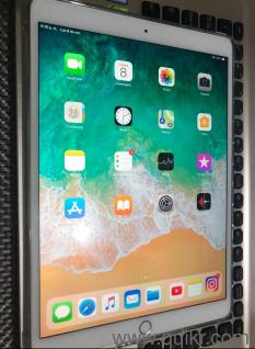 Apple iPad Pro 10 5  Gold Color  256GB internal storage   ProMotion 120Hz  HDR Display