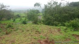 Agricultural land for Sale in Pune | Buy Agricultural land