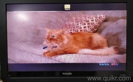 42 inch led tv   Used TV - DVD - Multimedia in Panchkula