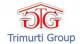 Trimurti Group  - Logo