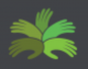 Palmtree Developments Pvt Ltd. - Logo